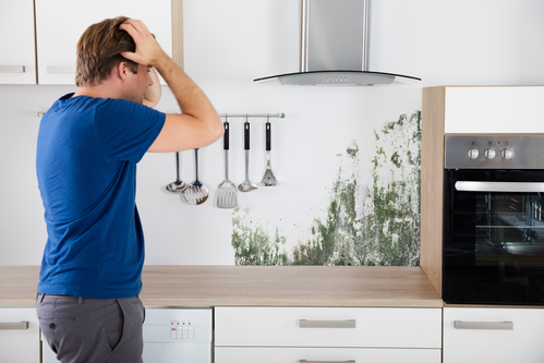 Shocked Man Seeing Mold in Kitchen - San Diego Mold Inspection
