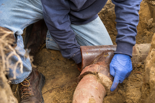 Clogged Sewer Line - Home Inspections San Diego