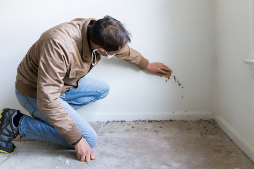 who pays for home inspection if deal falls through