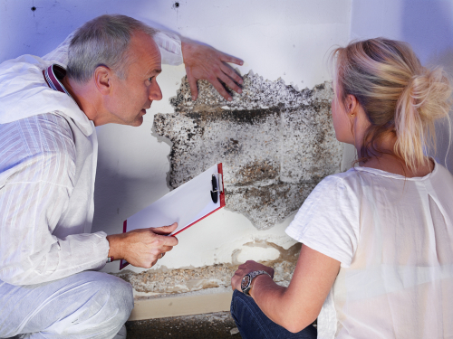Where can I hire the premier San Diego home inspectors